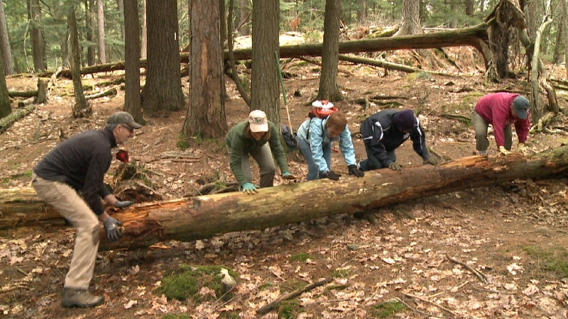 The NMU Conservation Crew, joined by the NCTA Hikers Chapter, hosted their Trail Maintenance...