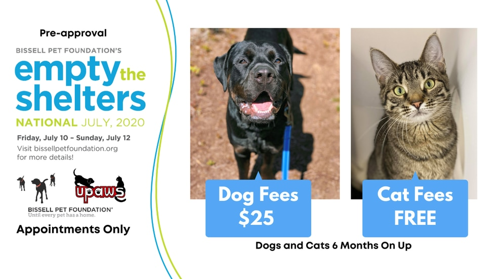 From July 10-12, adoptions are $25 for dogs and free for cats and small animals six months and older.