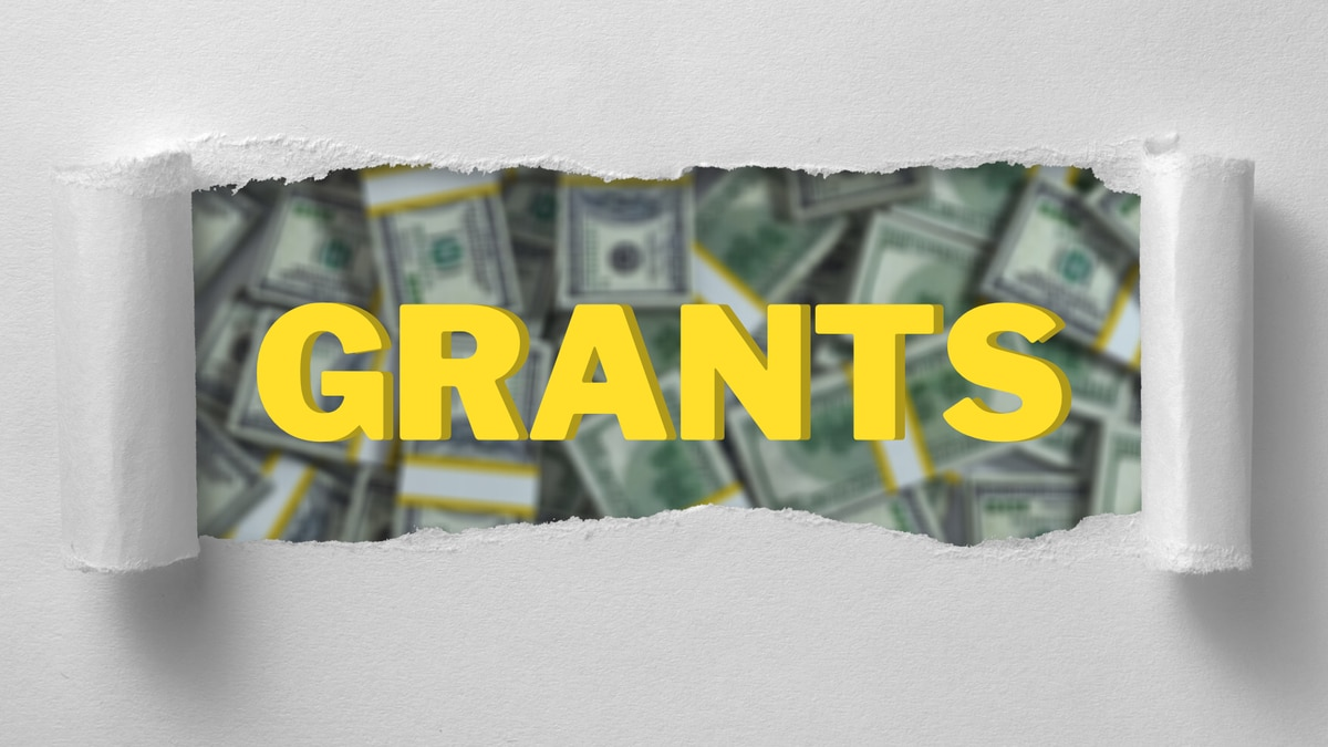 Grant money graphic.