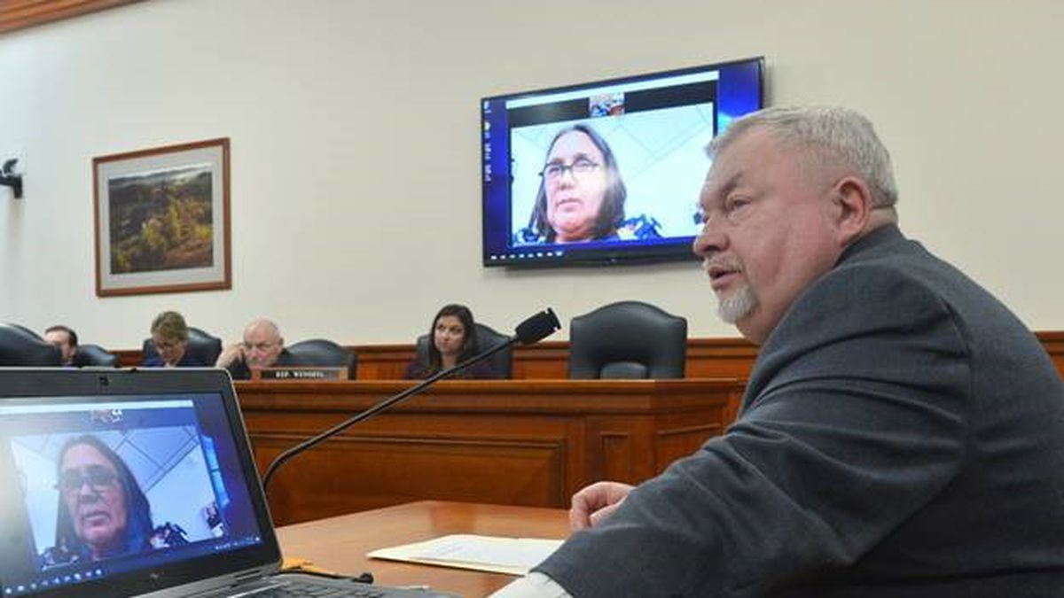 State Rep. Greg Markkanen and Dr. Kellie Holmstrom, joining via video conference from her animal clinic in Marquette, testify before the House Agriculture Committee in support of Markkanen's legislation to allow veterinarians to consult with pet owners on the use of CBD oil and marijuana products. (House Republicans Photo)
