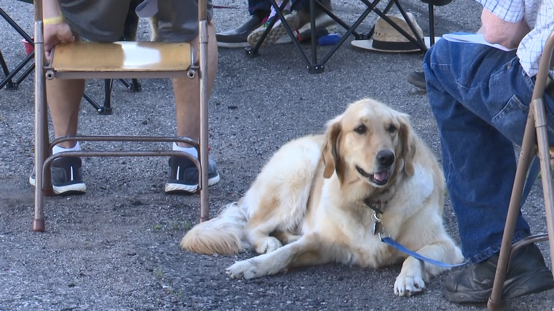 Dogs, toys, and bikes were blessed at the annual event.