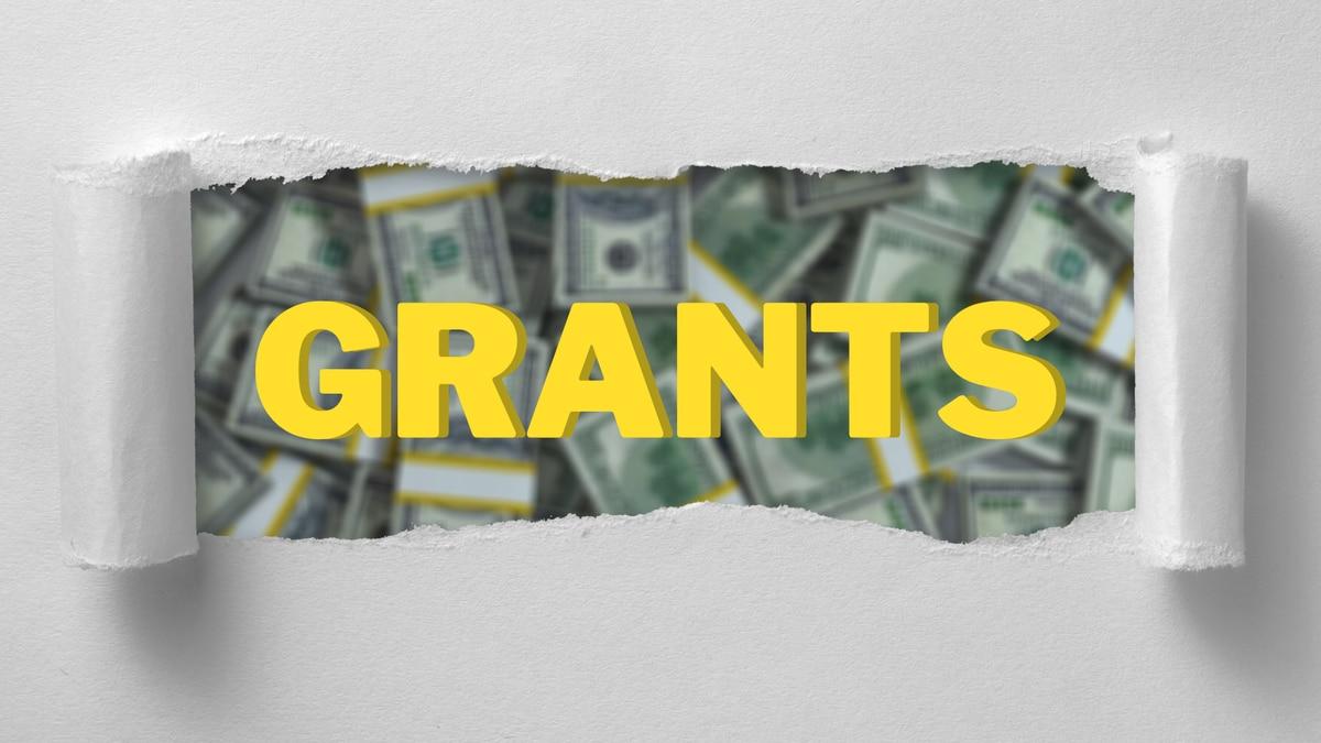 Grant money graphic.