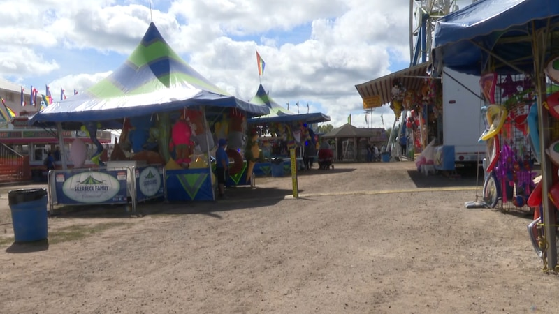 The fair featured several vendors and games for patrons to enjoy