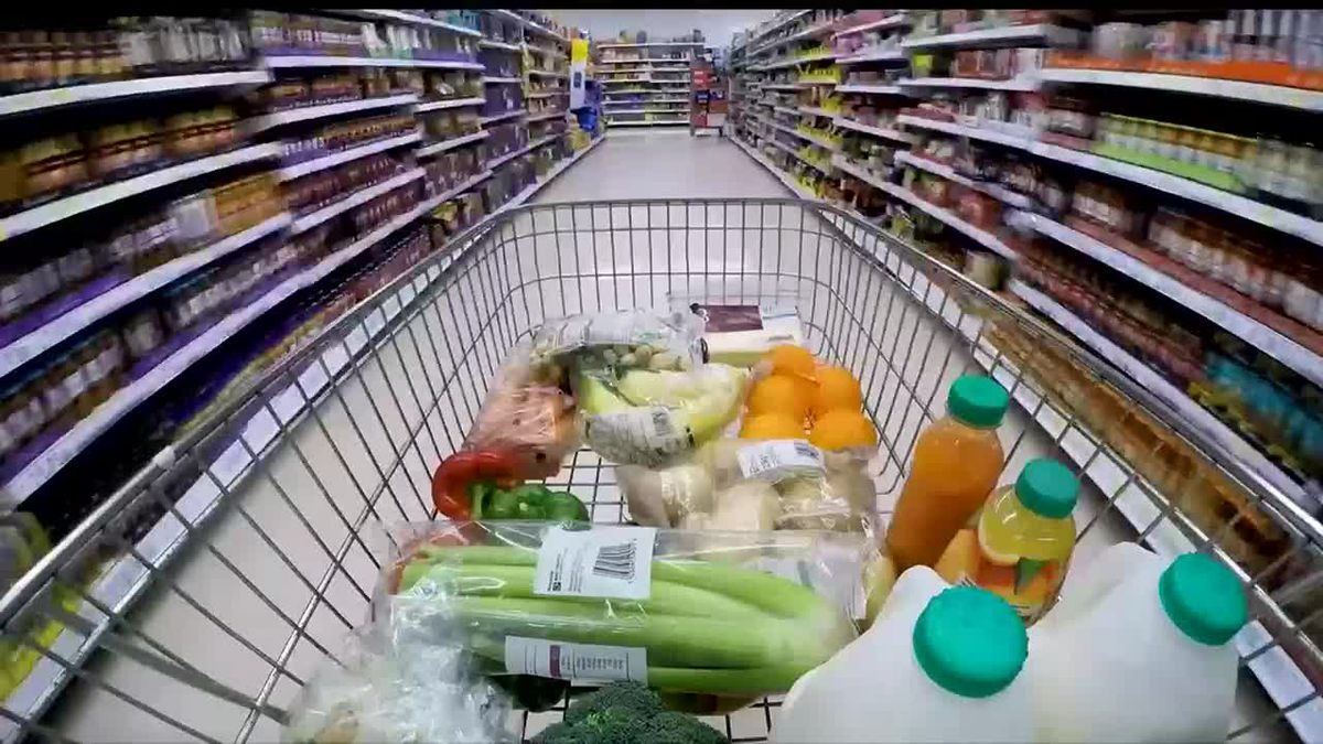 Groceries in a shopping cart.