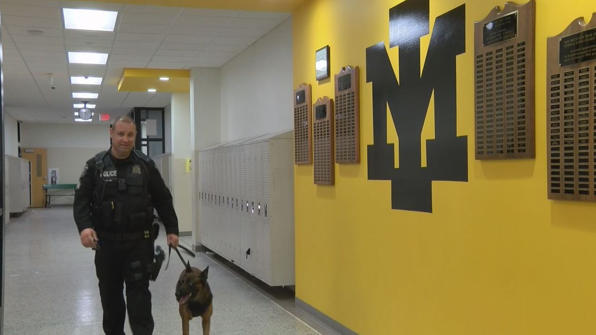 Sgt. Adam Ray and his K9 Falcon, walking the halls at Iron Mountain High School. (WLUC Photo)