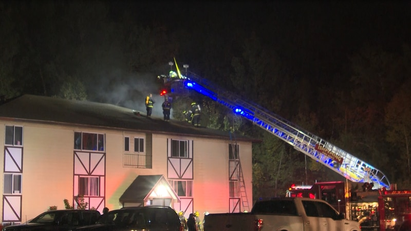 Multiple agencies were on the scene; no injuries reported
