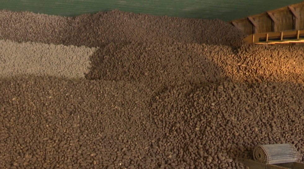 About 1.5 million pounds of potatoes.