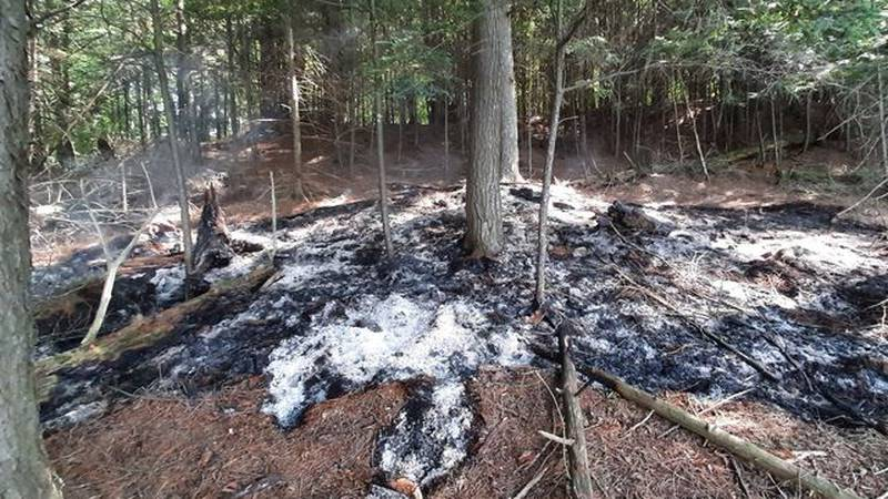 The aftermath of a 1/4-acre fire on an island in Deer Island Lake in the Ottawa National...