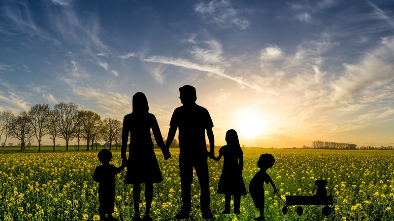 Family watching a sunset graphic.