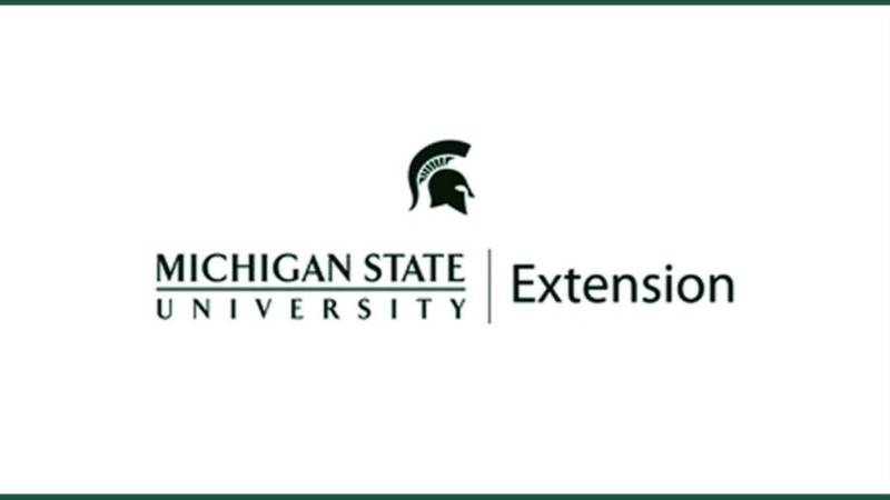 4H is part of the MSU Extension