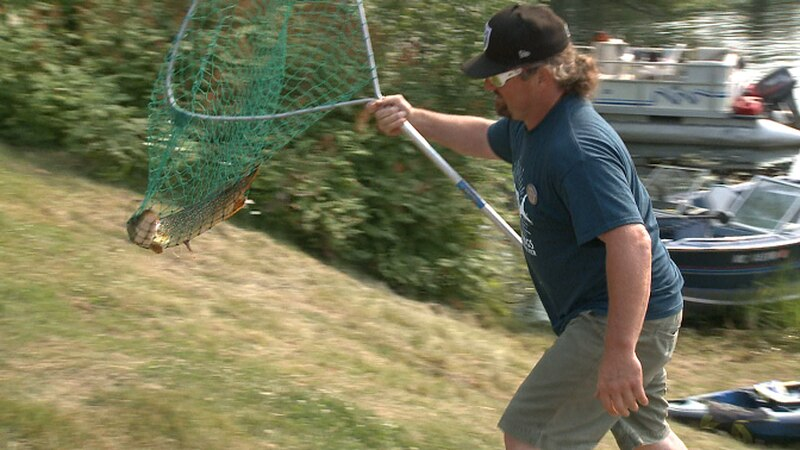Nearly 400 competing in this year's fishing tournament, including around 80 kids looking to...