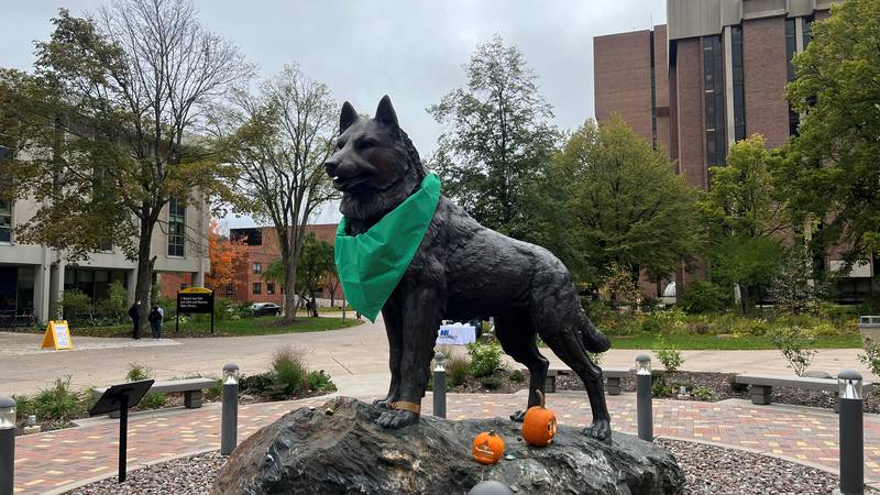 The husky on campus wants you to check out the new Global Campus by MTU.