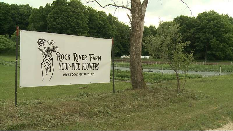The farm will soon offer an acre-and-a-half of 'Yoop Pick' flowers this year -- for your summer...