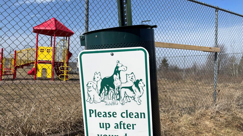 The Maasto Hiito Trailhead in Hancock may become the next dog park in Houghton County.