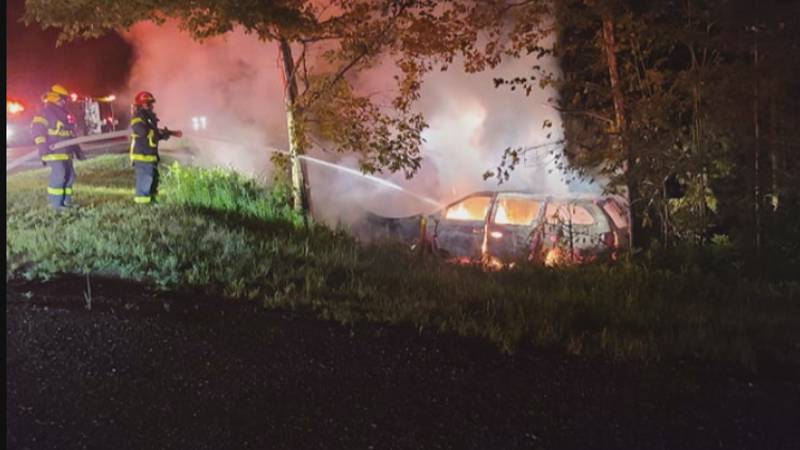 A mini van crashed into a pole and burst into flames after the driver swerved to avoid hitting...