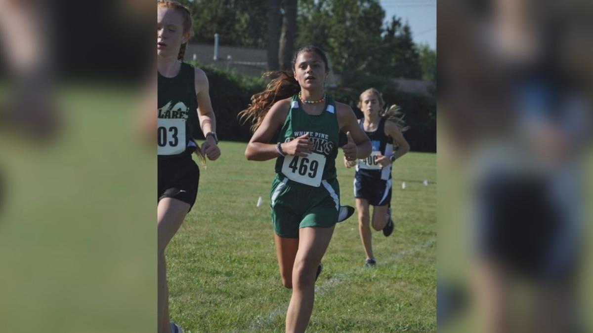 Mid-Michigan middle school cross country runner hit by deer during meet.