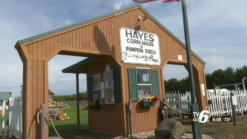 Hayes Corn Maze and Pumpkin Patch