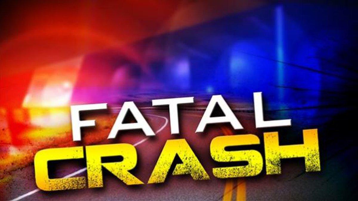 Fatal crash graphic.