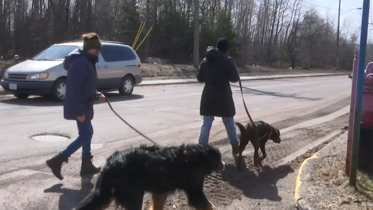 Back when the fundraising began, these dogwalkers said they'd love a park in Hancock. Soon...