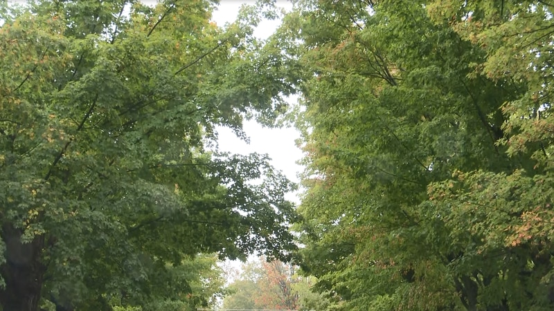 U.P. Travel gives fall color outlook
