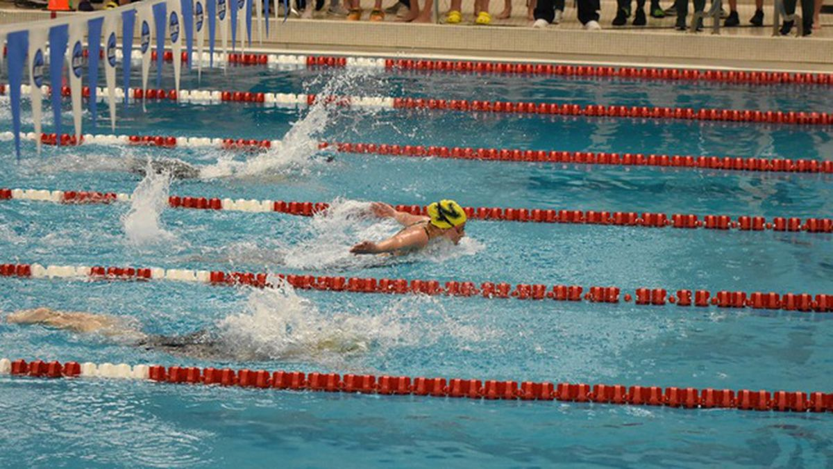 NMU Swimming and Diving team competes in virtual cup.