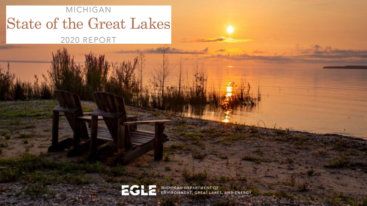 Cover image of Michigan's State of the Great Lakes 2020 Report.