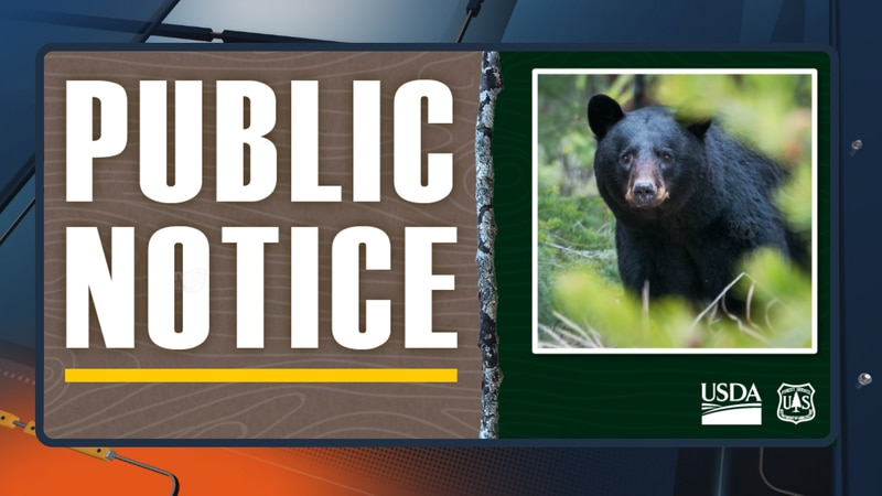 U.S. Forest Service - Ottawa National Forest public notice about bear encounter safety.