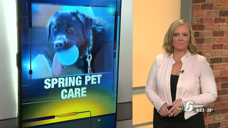 A local veterinarian explains why you should keep an eye on your pets as the Upper Peninsula...