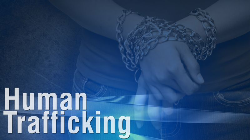 Human trafficking graphic.